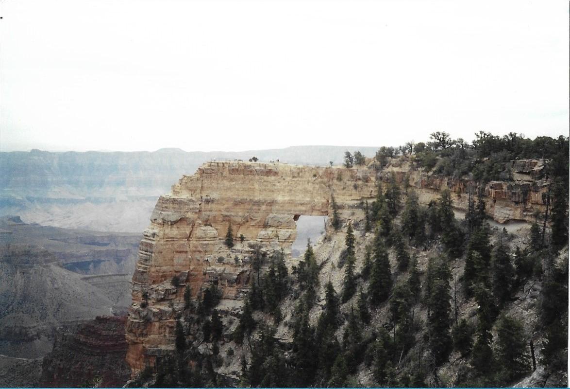 Grand Canyon Survive